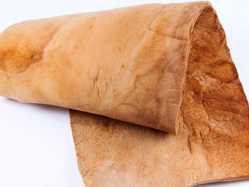 Грибная замша: как сделать заменитель кожи из обычного трутовика